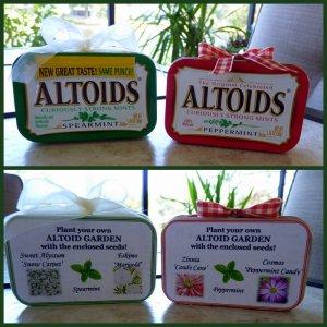 Altoid-Gardens1