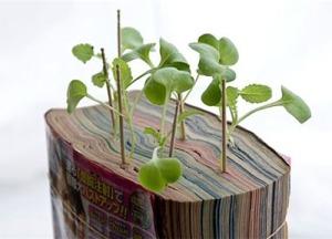 manga comic planter